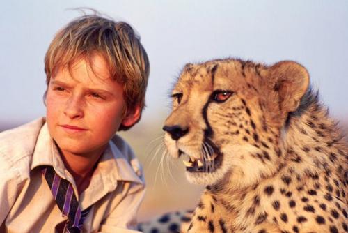 Лучшие фильмы про животных для детей