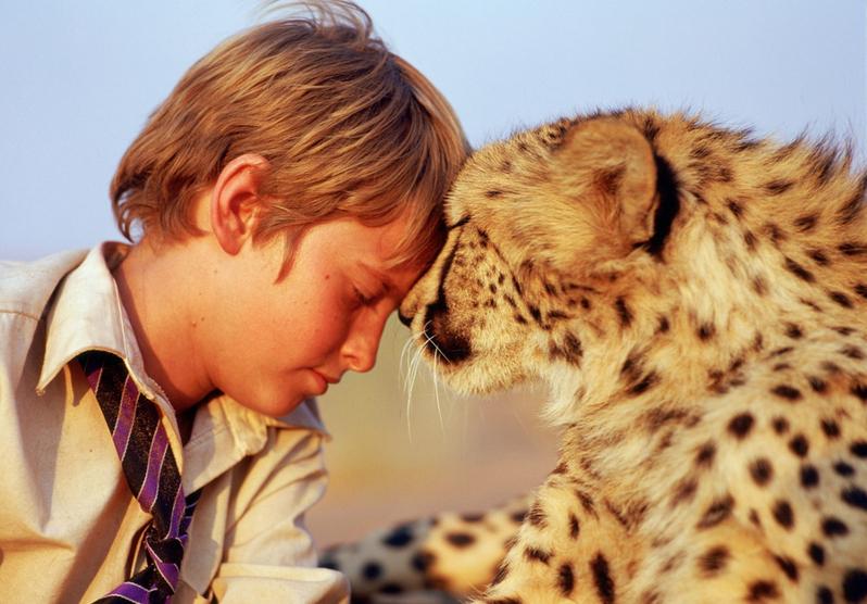 фильмы о животных для детей